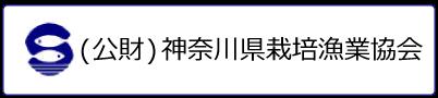 (公財)神奈川県栽培漁業協会